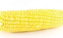 Na biały tle świeża kukurudza Zdjęcie Stock