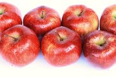 Na biały tle czerwoni jabłka Zdjęcie Royalty Free