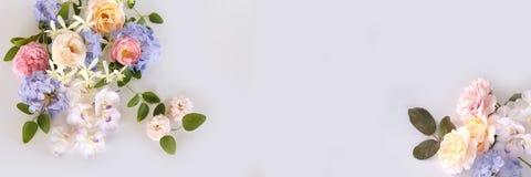 Na biały tle kwiatu piękny bukiet zdjęcia stock