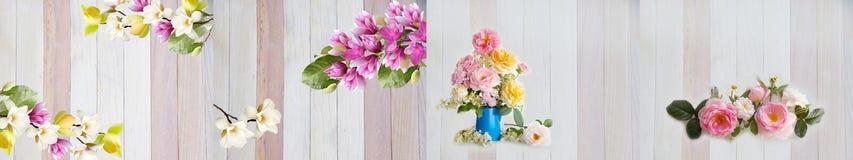 Na biały tle kwiatu piękny bukiet fotografia stock