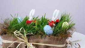 Na białym tle, obracanie świąteczny Wielkanocny skład składać się z barwioni jajka, zielona młoda trawa i miękka część, zbiory wideo