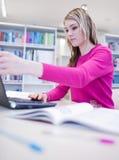 Na biblioteca Imagem de Stock