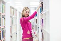 Na biblioteca Imagens de Stock Royalty Free