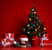 Na Bożenarodzeniowej nocy chłopiec czekać na Święty Mikołaj troszkę chłopiec sen boże narodzenia fotografia stock