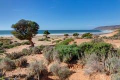 Na borda do oceano perto de Taghazout Marrocos Fotos de Stock Royalty Free