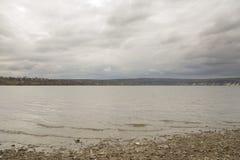 Na brzeg rzeki Obraz Stock