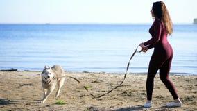 Na brzeg rzeki na plaży, Przy wschodem słońca, piękna kobieta w ciasnym kostiumu chodzi z psem plewa traken, utrzymania zbiory wideo