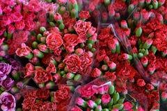 Na coleção de muitos ramalhetes florais; cor; colorido; beleza Fotos de Stock Royalty Free