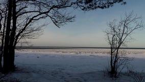 Na costa do Golfo da Finlândia no inverno video estoque