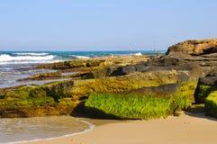 Na costa rochosa Fotos de Stock Royalty Free