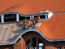 na dachu konstrukcji większy dach Zdjęcie Royalty Free