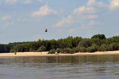 Na Danube rzece 3 Fotografia Stock