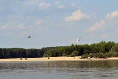 Na Danube rzece 5 Zdjęcie Stock