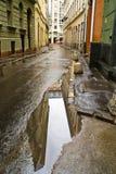 Na de regen Stock Afbeelding