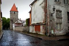 Na de regen Straat en toren van een stadsmuur Oude Stad Tallinn, Estland stock fotografie