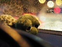 Na deszczowym dniu fotografia royalty free