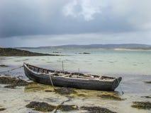 Na dnie morskim Zdjęcie Stock