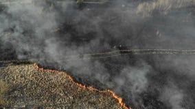 Na dużą skalę ogienie Płonąca trawa i drzewa w ogromnym obrzarze Grupa strażacy ocenia sytuację przy sceną zbiory wideo