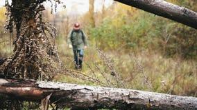 Na een jongen die in een bos, gimbal schot lopen stock videobeelden