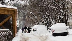 Na eerste sneeuw, 2014 Royalty-vrije Stock Fotografie