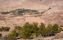 Na estrada à montagem Nebo, Jordânia, Médio Oriente Fotos de Stock Royalty Free