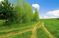 Na estrada transversaa de duas estradas. Imagens de Stock