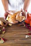Na fêmea entrega a galinha no molho e nas especiarias em uma placa Foto de Stock
