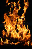 Na flama Imagem de Stock Royalty Free