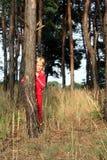 Na floresta Imagem de Stock Royalty Free