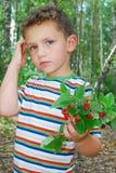 Na floresta, um menino que guarda um grupo das morangos. Imagens de Stock Royalty Free