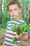 Na floresta, um menino que guarda um grupo das morangos. Fotografia de Stock