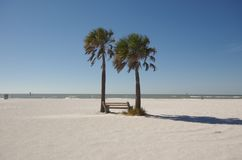 na florydę na plaży Fotografia Royalty Free