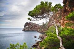 Na Foradada Cape. Mallorca Royalty Free Stock Photography