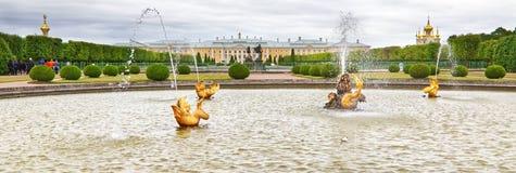 Na frente da fonte do palácio de Peterhof fotografia de stock royalty free