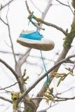 Na gałąź obwieszenia buta dziewczynie Fotografia Stock