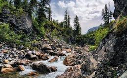 Na garganta de um rio da montanha Imagens de Stock