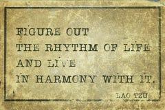 Na harmonia LaoTzu ilustração royalty free