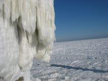 Na het ijsonweer Stock Fotografie