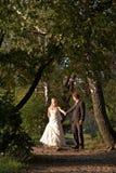 Na huwelijk Stock Foto's