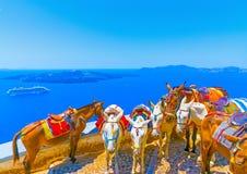 Na ilha de Santorini em Grécia Fotografia de Stock