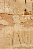 Na kamieniu wizerunek Obrazy Royalty Free