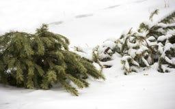 Na Kerstmis Royalty-vrije Stock Foto's