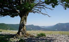 Na krawędzi, krajobrazy północny Hiszpania Fotografia Stock
