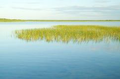 Na krawędzi jeziora. Zdjęcia Royalty Free