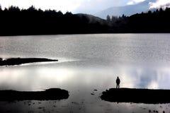 Na lagoa Fotografia de Stock Royalty Free