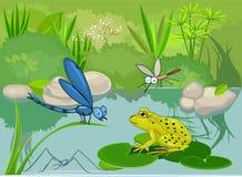 Na lagoa ilustração do vetor