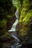Na Larach de Ess en el nacional Forest Park de Glenariff Foto de archivo libre de regalías