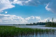 Na lasowym jeziorze Fotografia Royalty Free
