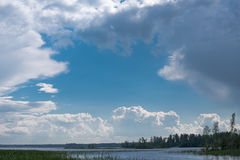 Na lasowym jeziorze Zdjęcie Royalty Free