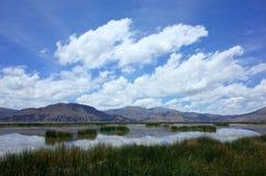 Na maneira às ilhas de flutuação no lago Titicaca imagem de stock